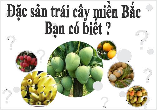 Khám phá Đặc sản trái cây 3 miền cùng Arofarm (P1)