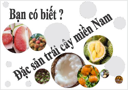 Khám phá Đặc sản trái cây 3 miền cùng Arofarm (P3)